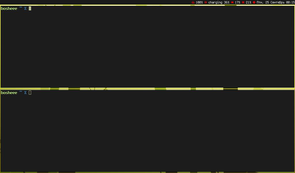 musca screenshot