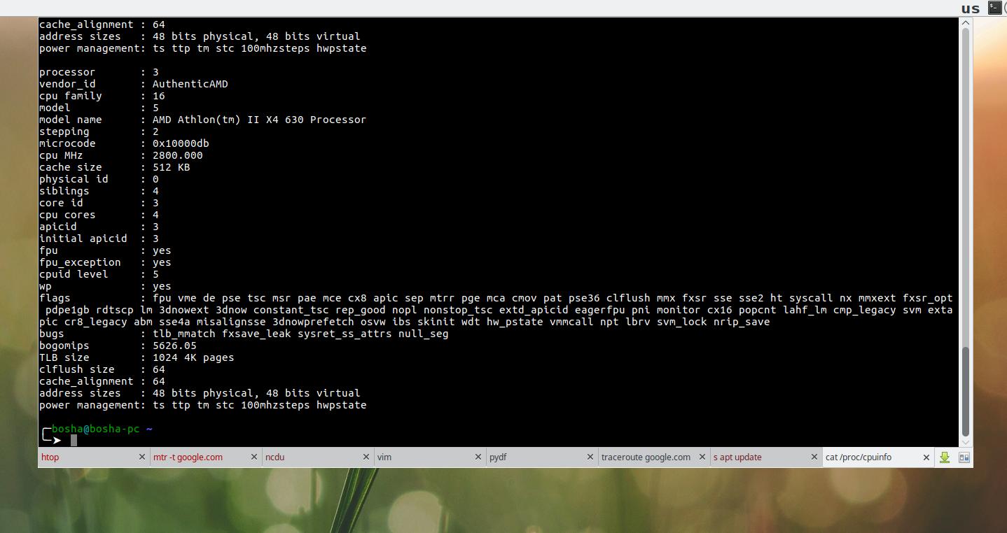 xfce4-terminal в режиме выпадающей консоли
